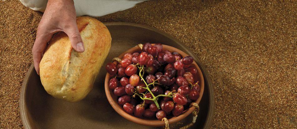 Il cibo secondo San Francesco